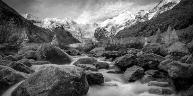 Auszeichnung bei «Naturfotograf des Jahres»
